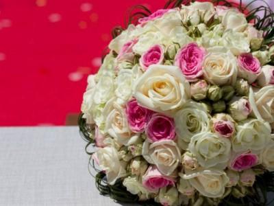 tienda online flores