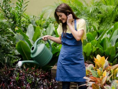 cuidar_plantas_verano